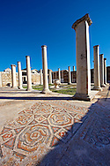 Forecourt of the late Roman period Jewish synagogue of Sardis, over 50 m long and large enough for 1000 worshipers, with 4th cent. AD mosaic floors & walls.  Sardis archaeological site, Hermus valley, Turkey. Discovered in 1962 as part of an on going  Harvard Art Museum excavation project. .<br /> <br /> If you prefer to buy from our ALAMY PHOTO LIBRARY  Collection visit : https://www.alamy.com/portfolio/paul-williams-funkystock/sardis-archaeological-site-turkey.html<br /> <br /> Visit our CLASSICAL WORLD HISTORIC SITES PHOTO COLLECTIONS for more photos to download or buy as wall art prints https://funkystock.photoshelter.com/gallery-collection/Classical-Era-Historic-Sites-Archaeological-Sites-Pictures-Images/C0000g4bSGiDL9rw