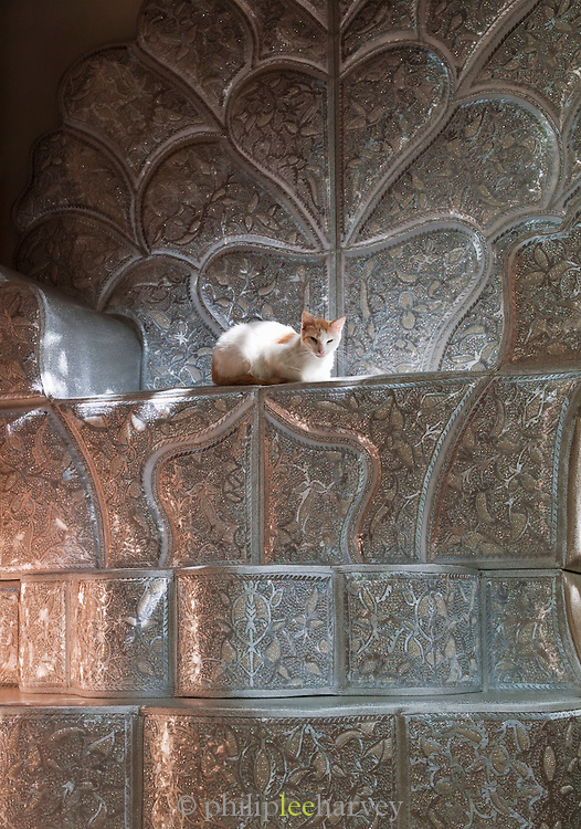 A cat sits on a bridal chair, made in the wood workshops in the medina of Fes, Morocco