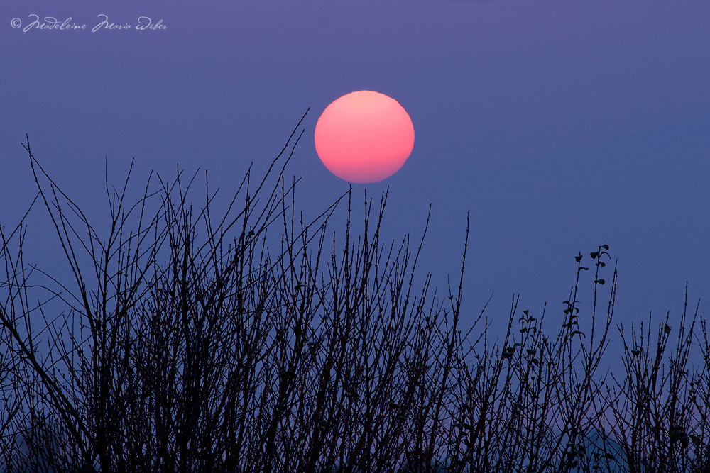 Pink Sun over County Kerry, Ireland / lg003