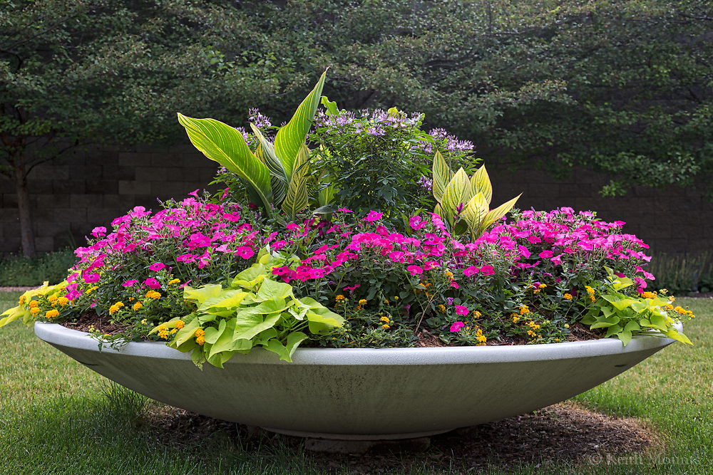 Life is like a big bowl of flowers.It's full of beauty and there's more to it than we ever expected.