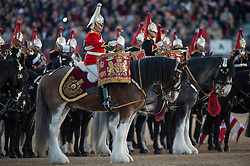 © London News Pictures. 10/06/2015. London, UK. A Drum Horse from the Mounted Bands of the Household Cavalry. Waterloo 200 themed open air Beating Retreat, performed on Horseguards Parade in London. Photo credit: Sergeant Rupert Frere/LNP