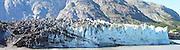 Alaska Glacier Bay