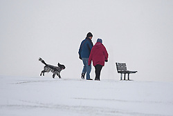 © Licensed to London News Pictures. 05/02/2012. Dunstable, UK. A man and woman walk their dog across a snow covered Dunstable Downs in Bedfordshire,  on February 5th, 2012. Photo credit : Ben Cawthra/LNP
