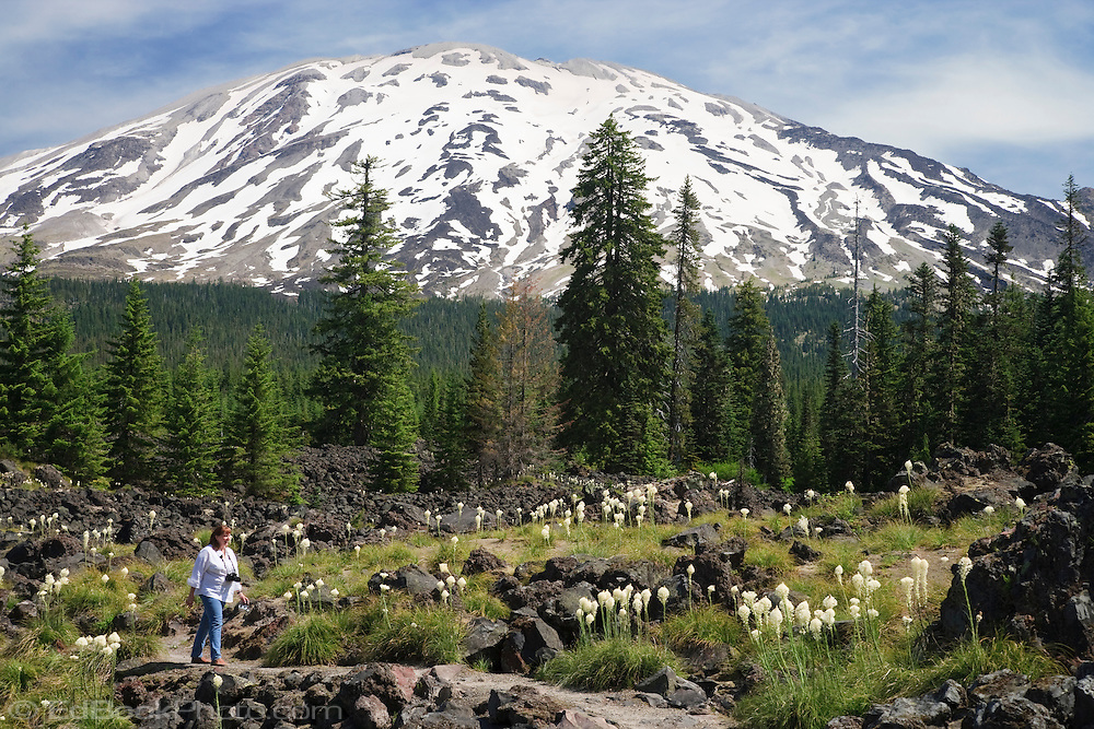 A woman hikes along a trail through a lava flow on the south side of Mount St Helens National Monument, Gifford Pinchot National Forest, Washington, USA
