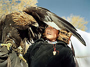 Bazer Bai, 14 years old, caught under the wing of his eagle.<br /> <br /> Eagle Hunting festival in Western Mongolia, in the province of Bayan Olgii. Mongolian and Kazak eagle hunters come to compete for 2 days at this yearly gathering. Mongolia