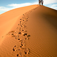 Path leading to group at the topo of a dune