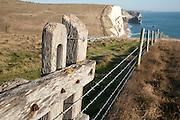 Coast near Durdle Door, Dorset, England, UK