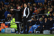 Wales manager Chris Coleman ® and his assistant Osian Roberts look on from the touchline. Vauxhall International football friendly, Wales v The Netherlands at the Cardiff city stadium in Cardiff, South Wales on Friday 13th November 2015. pic by Andrew Orchard, Andrew Orchard sports photography.