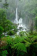 Oceania, New Zealand, Aotearoa, North Island, Tarawera Falls