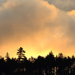 Clouds lit up by morning sun above an evergreen forest in Errol, New Hampshire. Little Bear Brook Pond.