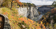 "In Letchworth State Park, renowned as the ""Grand Canyon of the East,"" the Genesee River roars northeast through a gorge over three major waterfalls between cliffs as high as 550 feet, surrounded by diverse forests which turn bright fall colors in the last three weeks of October. The large park stretches 17 miles between Portageville and Mount Morris in the state of New York, USA. Drive or hike to many scenic viewpoints along the west side of the gorge. The best walk is along Gorge Trail #1 above Portage Canyon from Lower Genesee Falls (70 ft high), to Inspiration Point, to Middle Genesee Falls (tallest, 107 ft), to Upper Genesee Falls (70 ft high). High above Upper Falls is the railroad trestle of Portageville Bridge, built in 1875, to be replaced 2015-2016. Geologic history: in the Devonian Period (360 to 420 million years ago), sediments from the ancestral Appalachian mountains eroded into an ancient inland sea and became the bedrock (mostly shales with some layers of limestone and sandstone plus marine fossils) now exposed in the gorge. Genesee River Gorge is very young, as it was cut after the last continental glacier diverted the river only 10,000 years ago. The native Seneca people were largely forced out after the American Revolutionary War, as they had been allies of the defeated British. Letchworth's huge campground has 270 generously-spaced electric sites. The panorama was stitched from 2 overlapping photos."