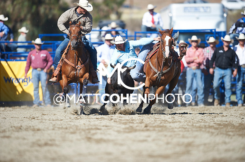 Steer wrestler Clayton Hass of Terrell, TX competes at the Rancho Mission Viejo Rodeo in San Juan Capistrano, CA.<br /> <br /> <br /> UNEDITED LOW-RES PREVIEW<br /> <br /> <br /> File shown may be an unedited low resolution version used as a proof only. All prints are 100% guaranteed for quality. Sizes 8x10+ come with a version for personal social media. I am currently not selling downloads for commercial/brand use.