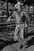 Boot - a working cowboy at Grand Canyon Ranch, Arizona