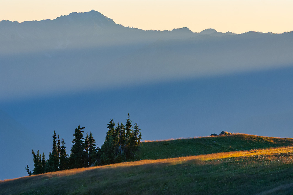 Bailey Range, afternoon haze, July, view from Hurricane Hill, Elwha River watershed, Olympic National Park, Clallam County, Washington, USA