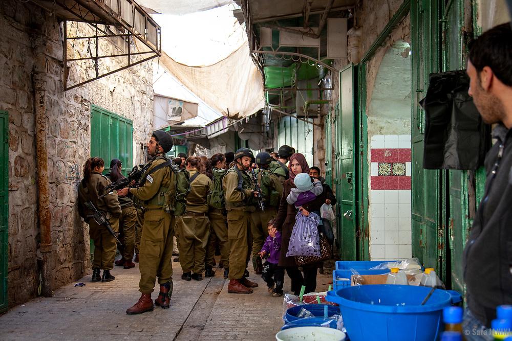 Hebron, West Bank, Palestine, West Asia