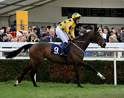 Wouldyouadamandeveit ridden by Lucy Gardner during the Abacus Decorators Lady Riders' Handicap Hurdle race at Uttoxeter Racecourse.
