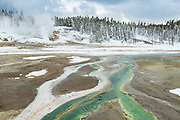 Porcelain Basin in the Norris Geyser Basin on Yellowstone National Park