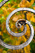 Rusty spiral decorations on an old neglected ornamental iron fence
