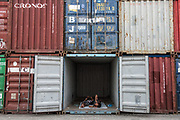 Indonesian person<br /> Cargo containers<br /> Harbour<br /> Jakarta<br /> Indonesia