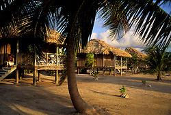 Palapas at Blackbird Caye, Belize.