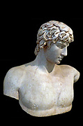 Portrait bust of Antinous. Thasian marble. Found at Patras. The youth Anthinoos of Bithyna, in Asia Minor was the favourite of the emperor Hadrian. After he drowned in the river Nile in AD 130, Hadrian had him defied and erected numerous statues, busts and portraits of him in cities and sanctuaries throughout the Roman empire AD 130-138.