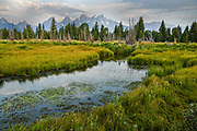 The Grand Teton mountains at sunrise reflected in the beaver pond at Schwabacher Landing in Grand Teton National Park, Moose, Wyoming.