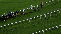 Runners and riders in the Randox Health Handicap Steeple Chase during day two of the Showcase at Cheltenham Racecourse