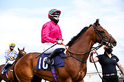 Crime of Passion ridden by Saffie Osborne and trained by Jamie Osborne - Mandatory by-line: Robbie Stephenson/JMP - 18/07/2020 - HORSE RACING- Bath Racecourse - Bath, England - Bath Races 18/07/20