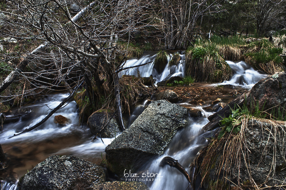 A springtime cascade of water brings a metamorphosis to a high desert mountain forest.<br /> <br /> Wall art is available in metal, canvas, float wrap and standout. Art prints are available in lustre, glossy, matte and metallic finishes.