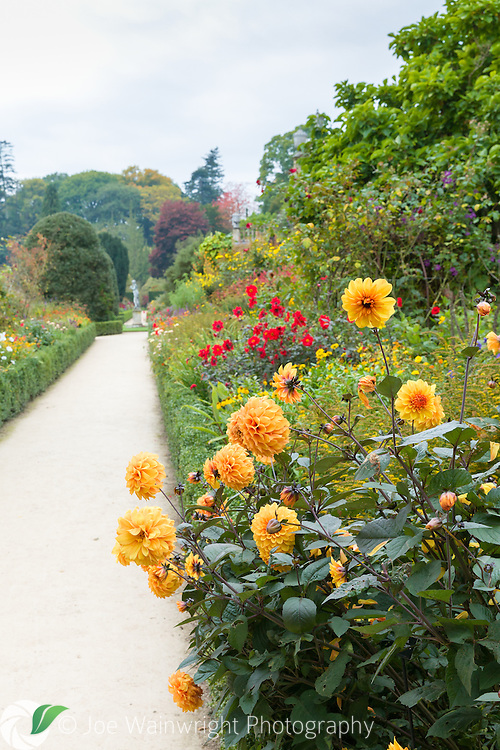 The borders on the Orangery Terrace at Powis Castle, still brilliantly colourful in October