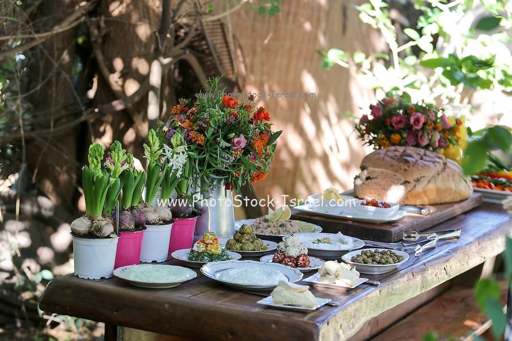 Luxurious breakfast buffet
