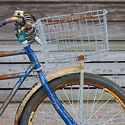 """Rusty old bicycle.<br /> <br /> For all details about sizes, paper and pricing starting at $85, click """"Add to Cart"""" below."""