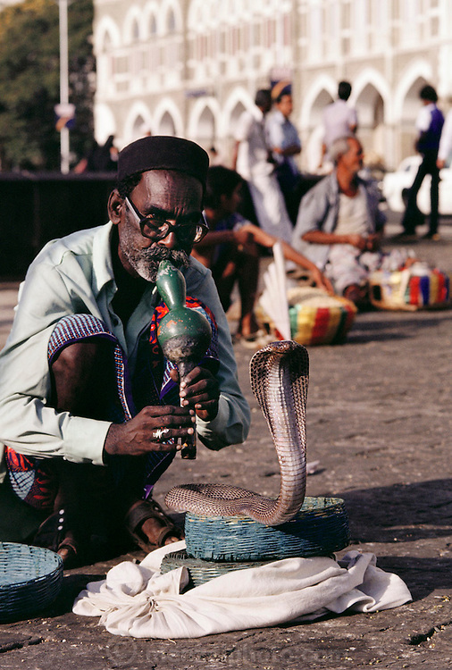 Snake charmer in front of the Taj Mahal Hotel, Bombay, India.