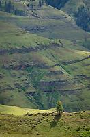Joseph Canyon northeasst Oregon