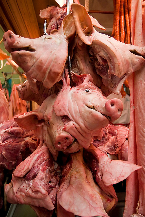 Decapitated pig heads hang from a hook at a butcher stall in La Merced market in Mexico City, Mexico on June 20, 2008.