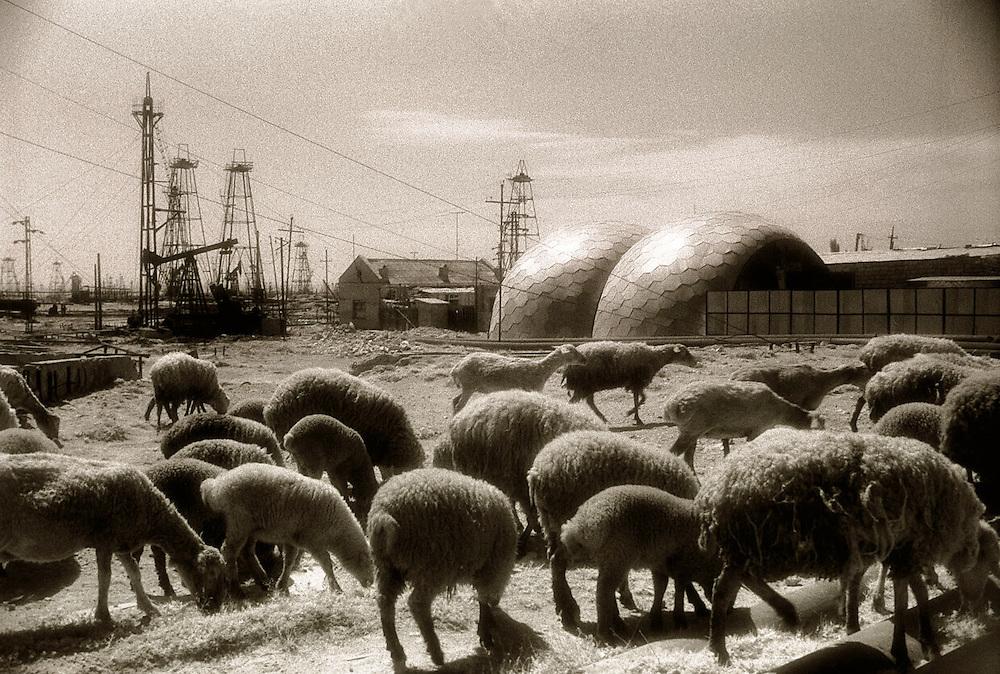 Baku Oil Fields - Old Soviet era fields are all but deserted these days..