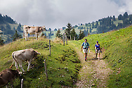 Guide and hiker on the Via Alpina, Swiss Alps