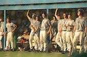 Baseball Days