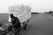 Burkina Faso - Cotton & Collectives