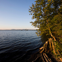 The shoreline of Lily Bay State Park on Moosehead Lake in Maine USA