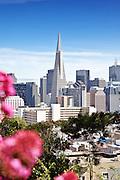 San Francisco City Skyline Photos