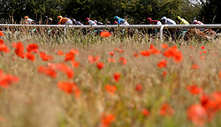 Salmon Fishing ridden by Eoin Walsh (left) leads the field during The Racing Welfare Racing Staff Week Novice Auction Stakes at Thirsk Racecourse, Thirsk. PRESS ASSOCIATION Photo. Picture date: Wednesday July 4, 2018. Photo credit should read: Simon Cooper/PA Wire