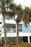 Palm trees and condominiums.  Indian Rocks Beach Tampa Bay Area Florida USA