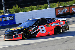 March 23, 2019 - Martinsville, VA, U.S. - MARTINSVILLE, VA - MARCH 23:  #8: Daniel Hemric, Richard Childress Racing, Chevrolet Camaro Bass Pro Shops during practice for the STP 500 Monster Energy NASCAR Cup Series race on March 23, 2019 at the Martinsville Speedway in Martinsville, VA.  (Photo by David J. Griffin/Icon Sportswire) (Credit Image: © David J. Griffin/Icon SMI via ZUMA Press)
