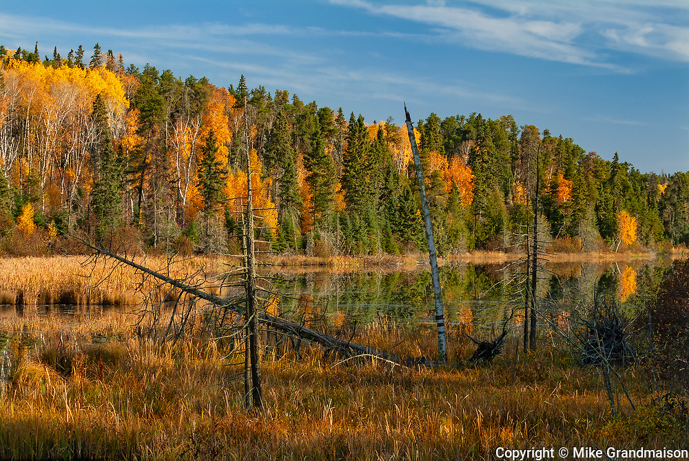 Autumn on Andy Lake<br />Near Kenora<br />Ontario<br />Canada