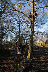 Harefield, UK. 19 January, 2020. An activist throws a line to another activist sitting on a pallet in a tree at the Colne Valley wildlife protection camp. Activists from Extinction Rebellion, Stop HS2 and Save the Colne Valley attending a 'Stand for the Trees' event timed to coincide with tree felling work for HS2 have retaken the camp from which a small group of Save the Colne Valley activists had been evicted by bailiffs acting on behalf of HS2 over the previous week and a half. 108 ancient woodlands are set to be destroyed by the high-speed rail link.