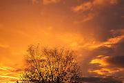 USA, Oregon, Keizer,  sunset.