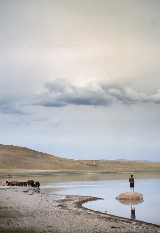 Gathering horses at dusk on Tsagaan Nuur lake, near Moron town, Khövsgöl province.