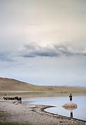 Gathering horses at dusk on Tsagaan Nuur lake, near Moron town, Khövsgöl province.