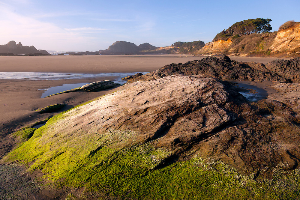 Late afternoon light creates a warm glow on the beach of Seal Rock State Park at low tide.
